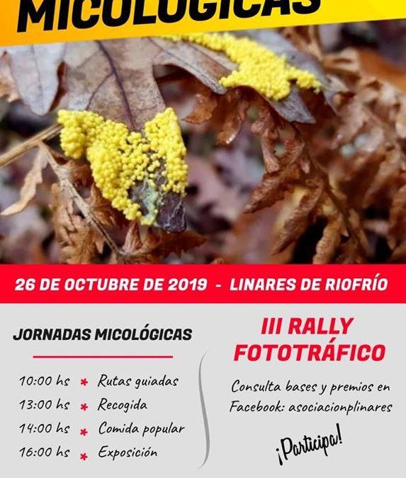 Jornadas micológicas 2019